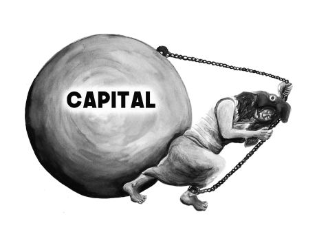 Boulet Capital 5 LAVIS