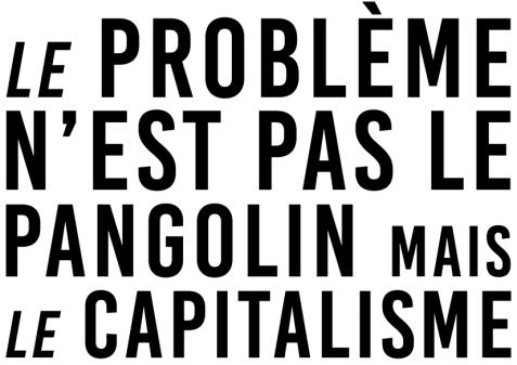Le problème n'est pas la pangolin mais le capitalisme