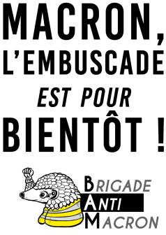 Macron L'embuscade est pour bientôt BAM Pangolin