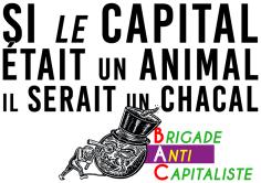 Si le capital était un animal Il serait un chacal BAC