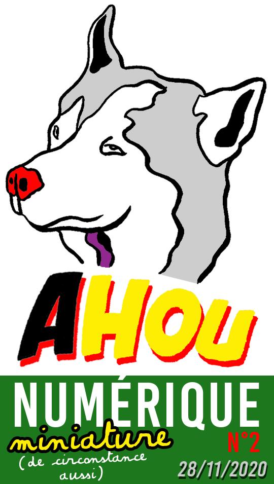 Logo AHOU NUMÉRIQUEMINIATURE n°2