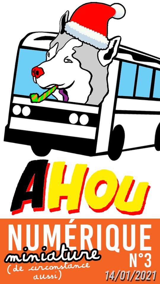 Logo AHOU NUMÉRIQUEMINIATURE n3.5